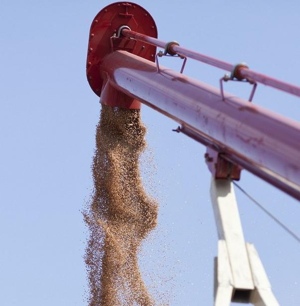 Транспортер зерна шнековый ростсельмаш конвейер архитектура